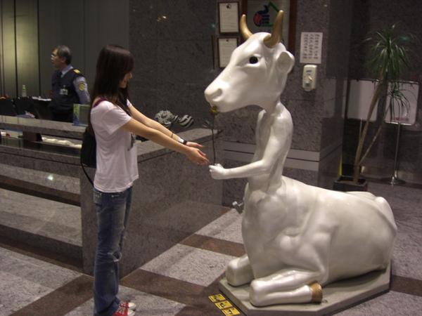 是牛是馬還是人