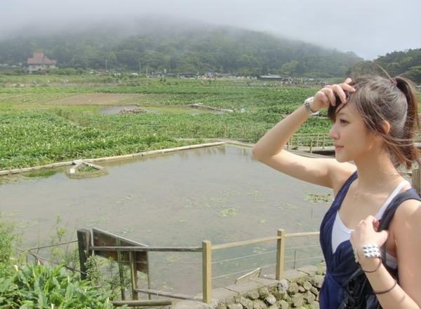 在江蘇看油菜花