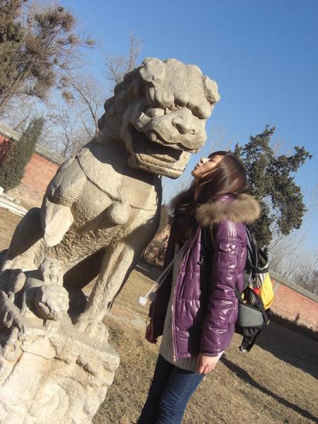 比較有趣的是廟裡面總共有99頭石獅子
