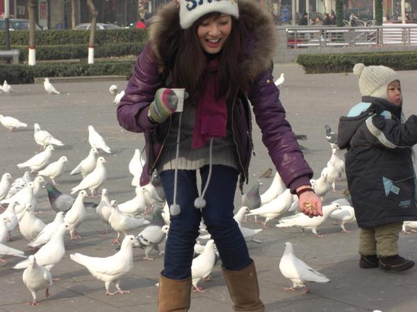 拿飼料餵鴿子