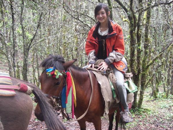 耶 我騎到一匹很花俏的馬兒