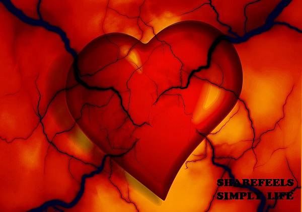 heart-2372134_960_720.jpg