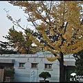 DSC_00158.jpg