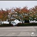 愛寶樂園0041