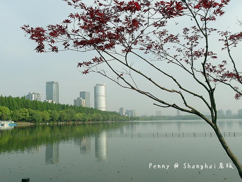 南京玄武湖18.jpg