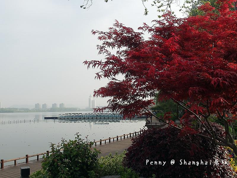 南京玄武湖20.jpg