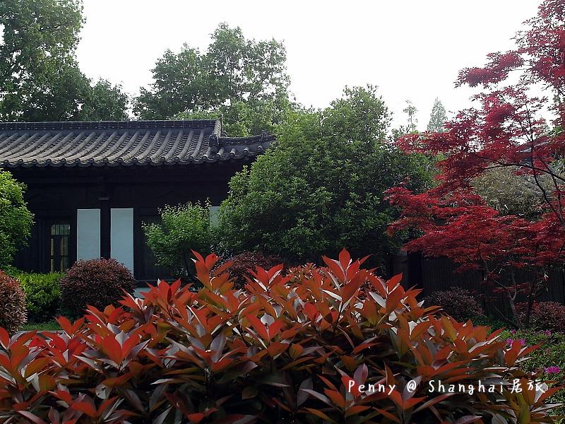 南京玄武湖31.jpg