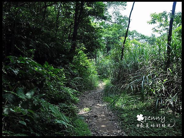 PDSC_0365夢湖43.jpg