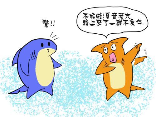 sharki_blog002_1.jpg