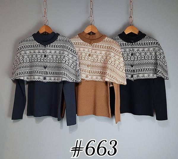 _663 (3).jpg
