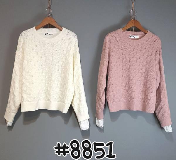 _8851 (3).jpg