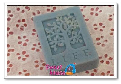 蘆薈薄荷皂4.jpg