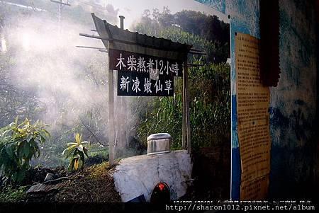 大坑圓環附近嫩仙草+芋園~好吃