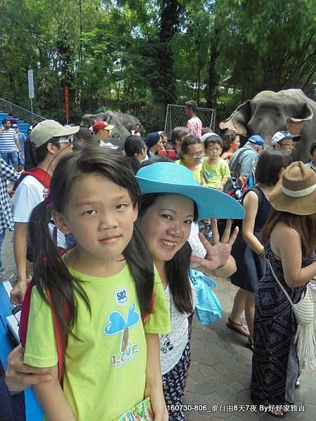 160802_1賽福瑞野生動物園 (31).JPG