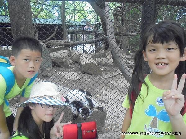 160802_1賽福瑞野生動物園 (39).JPG