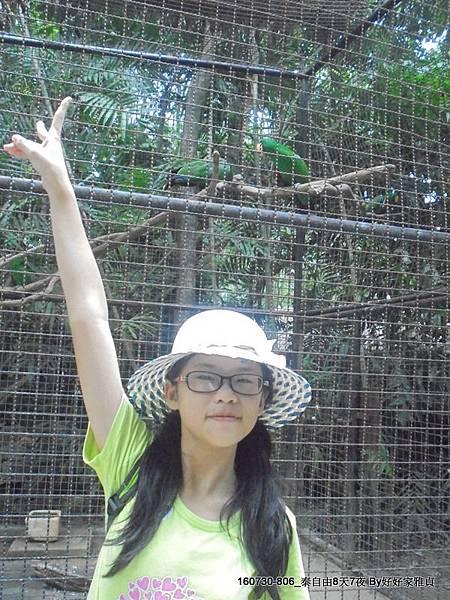 160802_1賽福瑞野生動物園 (99).JPG