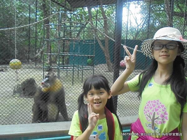 160802_1賽福瑞野生動物園 (95).JPG