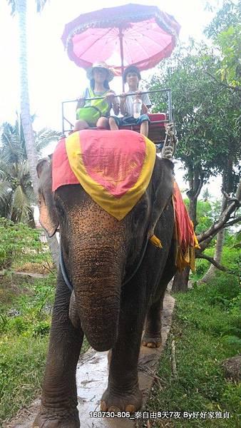 160805_2騎大象 (5).JPG