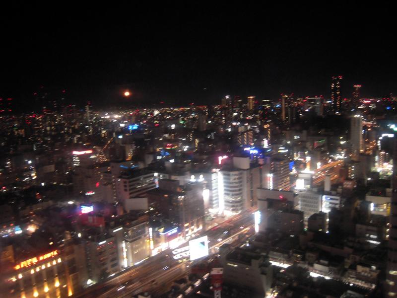 摩天輪夜景.jpg