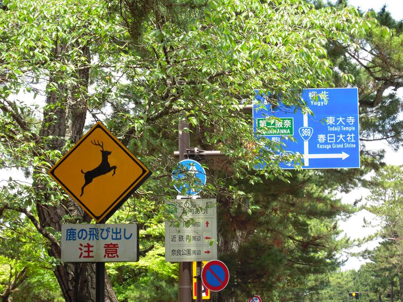 奈良-小心鹿招牌.jpg