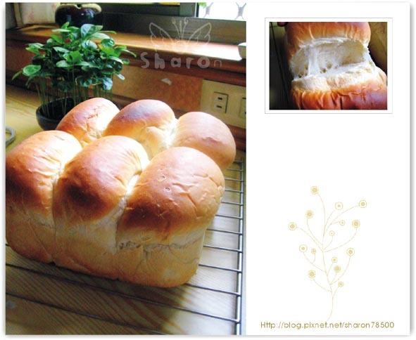 第一次做麵包-波特吐司-1.jpg