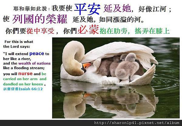 平安榮耀的錫安母親乳養神國子民.jpg