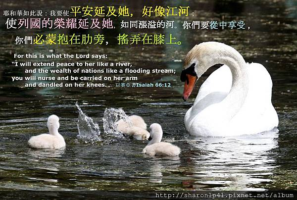 錫安母親的平安榮耀必使神的子民得安慰.jpg