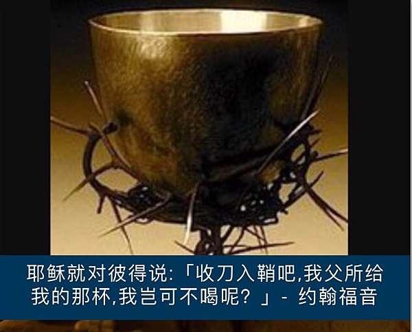 Image result for 【我父所给我的那杯,我岂可不喝呢?】(约18:11 )