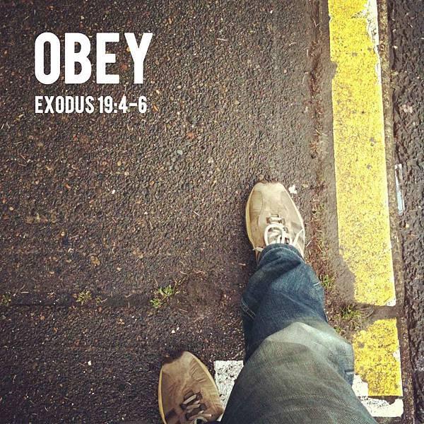 obedience_2014_03_14-16.jpg