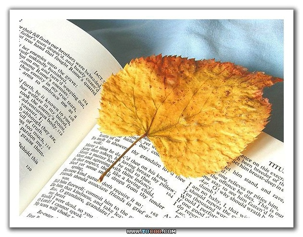 78295-Bookmark.jpg