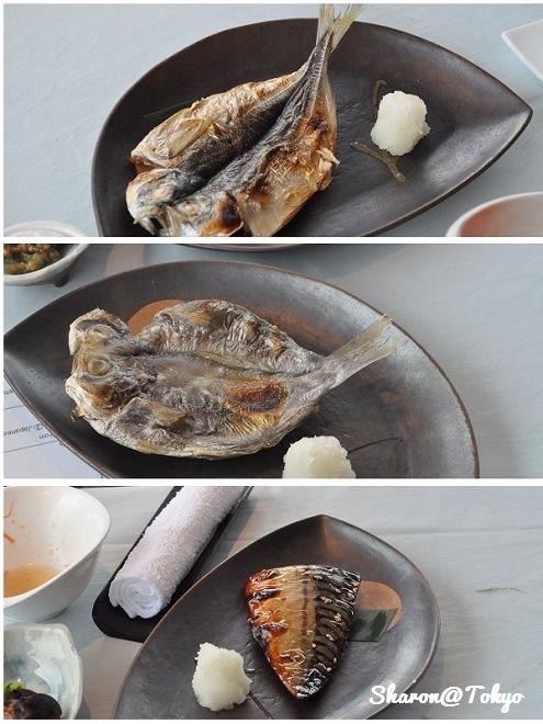 kaze魚