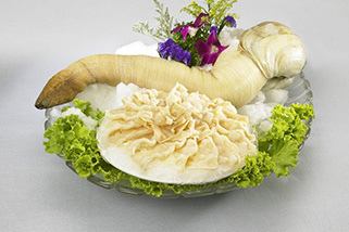 Canadian_Geoduck_small.jpg