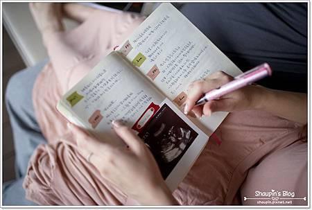 我的孕人日記