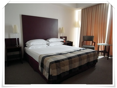 hotelcapital (1).JPG