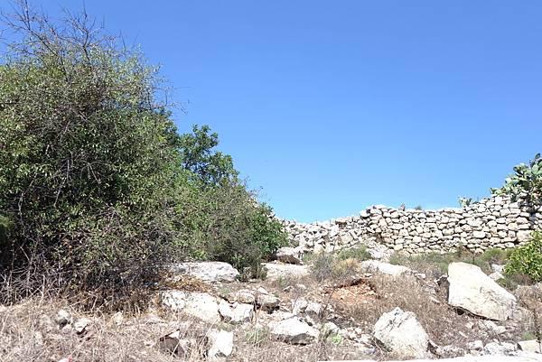 馬爾他Malta