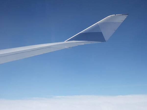 機翼與藍天.JPG