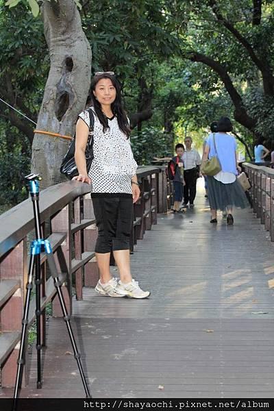 植物園 (14).JPG