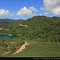 千島湖 (16).JPG