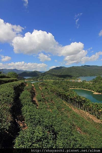 千島湖 (20).JPG