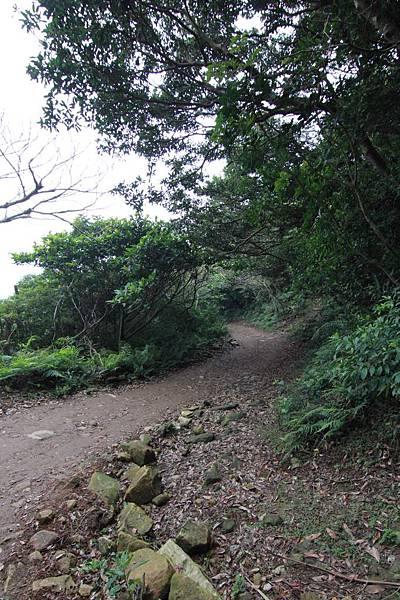 觀音山 (31).JPG