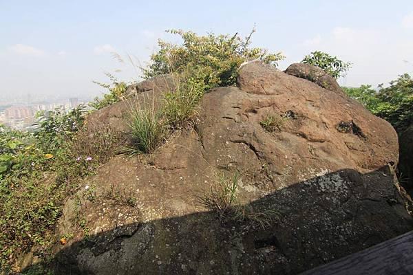 仙跡岩 (29).JPG
