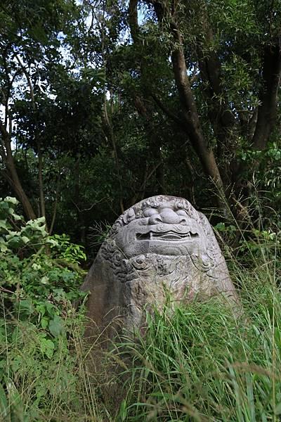 文間山 (16).JPG