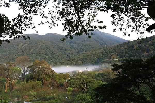 陽明山 (4).JPG
