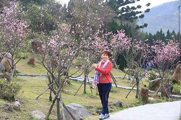 陽明山 (15).JPG