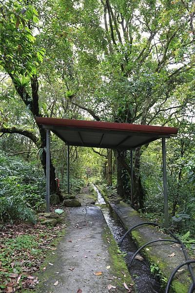 猴洞坑 (3).JPG