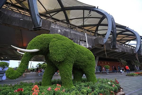 綠色博覽會 (4).JPG