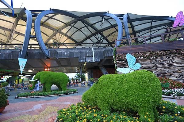 綠色博覽會 (14).JPG