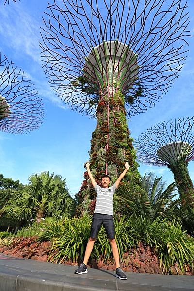 新加坡-1 (15).JPG