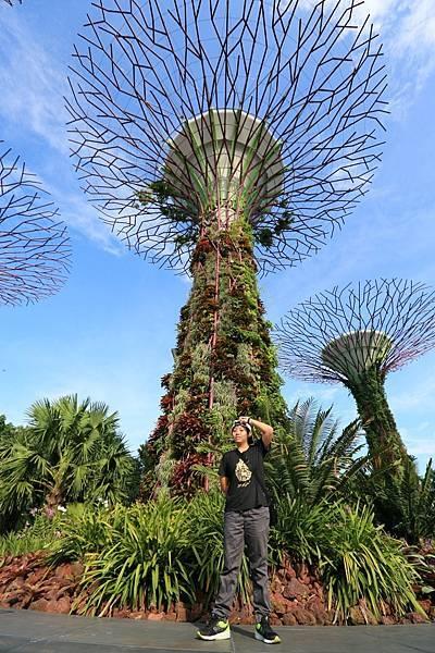 新加坡-1 (14).JPG