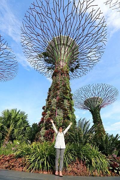 新加坡-1 (13).JPG